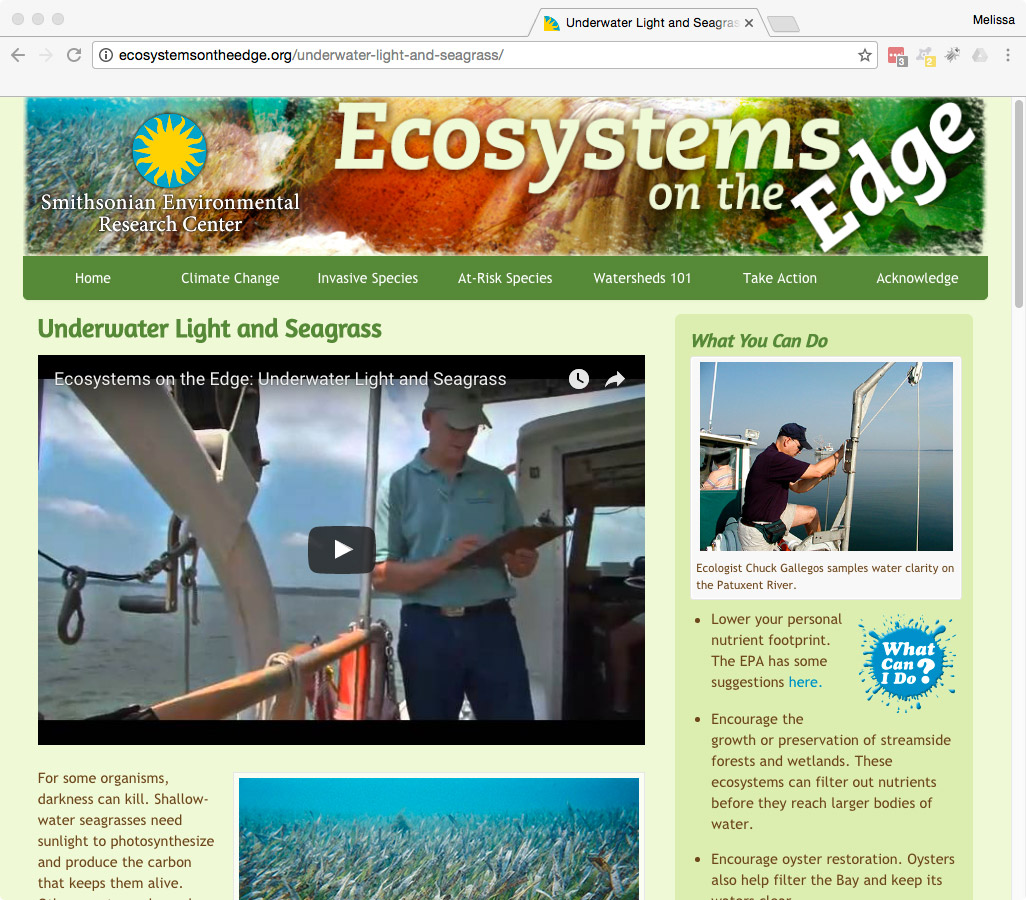 Ecosystems on the Edge Screenshot
